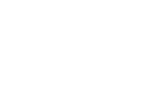 fintecsystems logo inverted