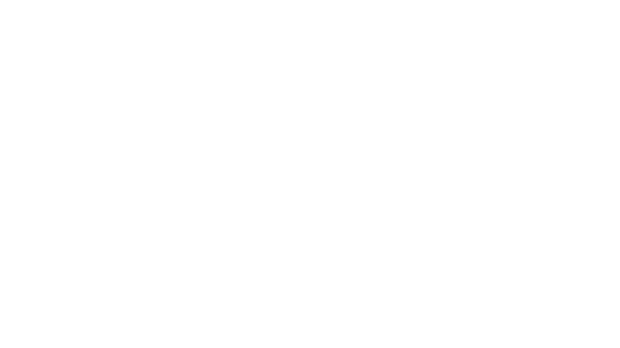 nfon logo inverted